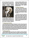 0000071447 Word Templates - Page 4