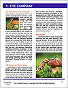 0000071451 Word Templates - Page 3