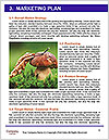 0000071451 Word Templates - Page 8
