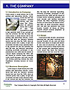 0000071452 Word Template - Page 3
