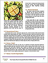 0000071460 Word Template - Page 4