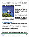 0000071466 Word Template - Page 4