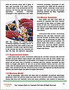 0000071469 Word Templates - Page 4
