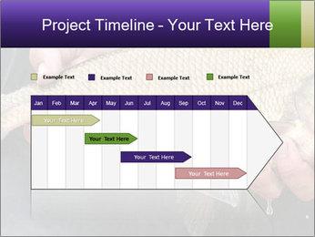 0000071470 PowerPoint Template - Slide 25