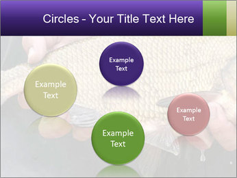 0000071470 PowerPoint Template - Slide 77