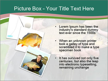 0000071471 PowerPoint Template - Slide 17