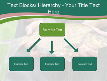 0000071471 PowerPoint Template - Slide 69