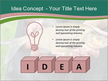 0000071471 PowerPoint Template - Slide 80