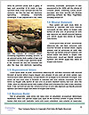 0000071479 Word Template - Page 4