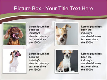 0000071481 PowerPoint Templates - Slide 14