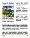 0000071482 Word Template - Page 4