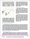 0000071487 Word Template - Page 4