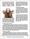 0000071494 Word Template - Page 4