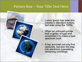 0000071497 PowerPoint Template - Slide 17