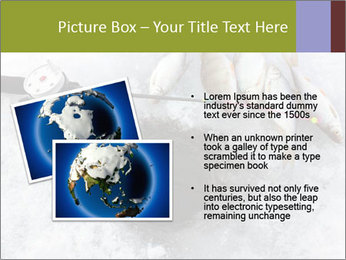 0000071497 PowerPoint Template - Slide 20