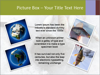0000071497 PowerPoint Template - Slide 24