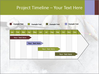 0000071497 PowerPoint Template - Slide 25