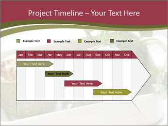 0000071498 PowerPoint Templates - Slide 25