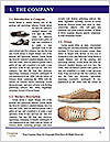 0000071499 Word Template - Page 3
