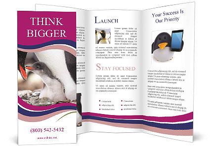 0000071502 Brochure Template