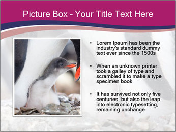 0000071502 PowerPoint Template - Slide 13