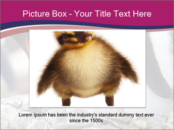 0000071502 PowerPoint Template - Slide 16