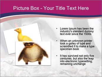 0000071502 PowerPoint Template - Slide 20