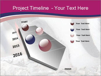 0000071502 PowerPoint Template - Slide 26