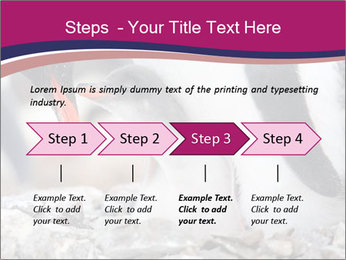 0000071502 PowerPoint Template - Slide 4