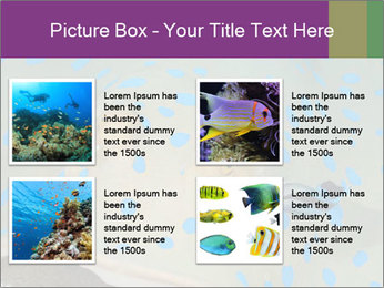0000071506 PowerPoint Template - Slide 14