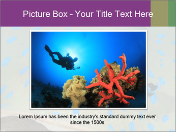 0000071506 PowerPoint Template - Slide 15