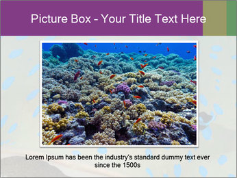0000071506 PowerPoint Template - Slide 16