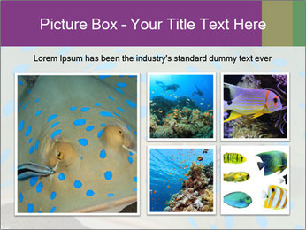 0000071506 PowerPoint Template - Slide 19