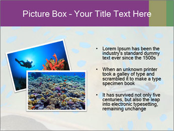0000071506 PowerPoint Template - Slide 20