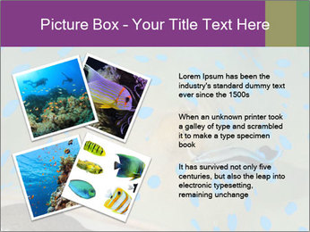 0000071506 PowerPoint Template - Slide 23