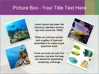 0000071506 PowerPoint Template - Slide 24