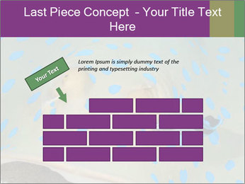 0000071506 PowerPoint Template - Slide 46