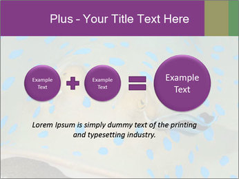 0000071506 PowerPoint Template - Slide 75