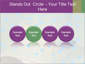0000071506 PowerPoint Template - Slide 76