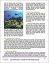 0000071506 Word Templates - Page 4
