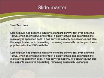 0000071511 PowerPoint Template - Slide 2