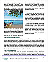 0000071533 Word Template - Page 4