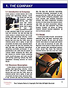 0000071535 Word Template - Page 3