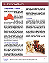 0000071544 Word Template - Page 3
