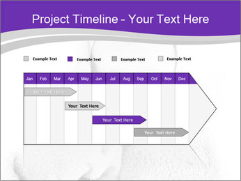 0000071545 PowerPoint Template - Slide 25
