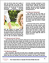 0000071546 Word Template - Page 4