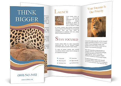 0000071552 Brochure Templates