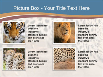 0000071552 PowerPoint Template - Slide 14