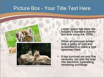 0000071552 PowerPoint Template - Slide 20