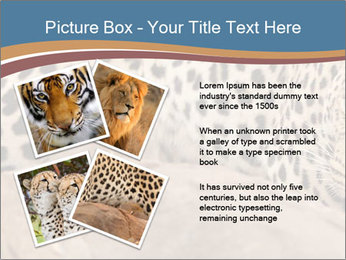 0000071552 PowerPoint Template - Slide 23